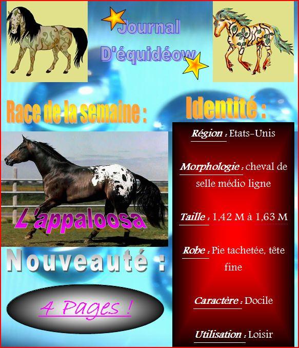 Journal d'Equidéow n°3 page 1